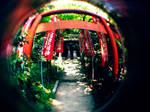 Fisheye Japan - Inari by Skybase