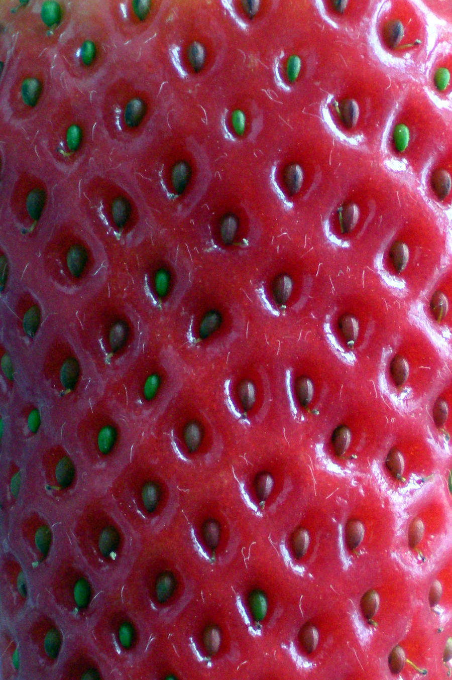 Stock Texture-Strawberry seeds by rockgem