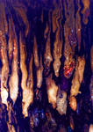 Stock Texture - Marbled XIII