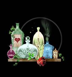 The Potion Shelf by rockgem