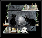Witch-Cats