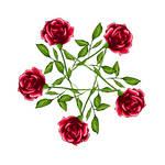 Rose Pentagram - Colour