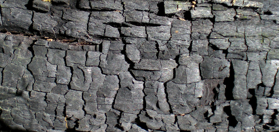 Stock Texture - Burnt Wood by rockgem
