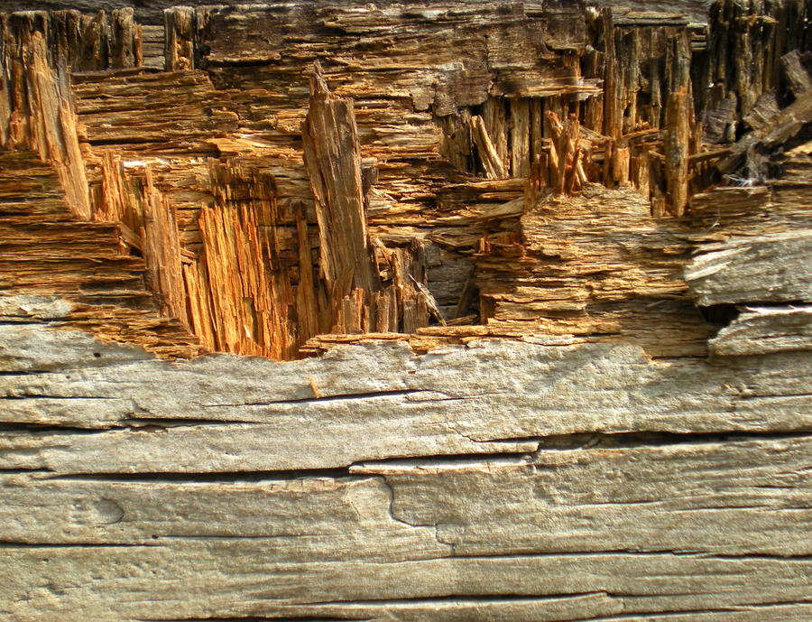 Stock Texture -Broken Plyboard by rockgem