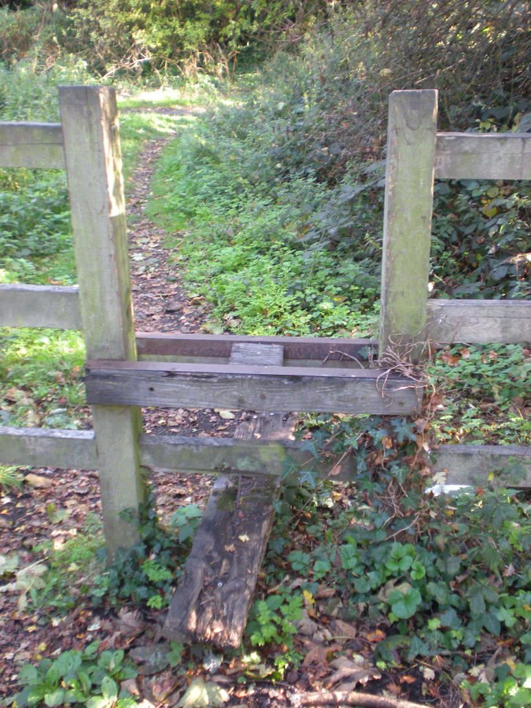 Stock Image - Crooked Stile by rockgem