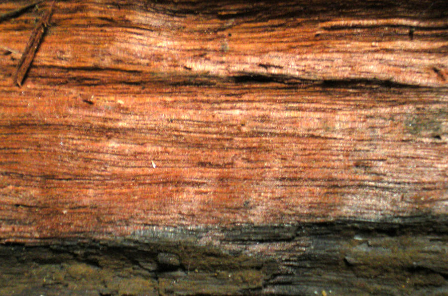 Stock Texture - Split Wooden beam II by rockgem