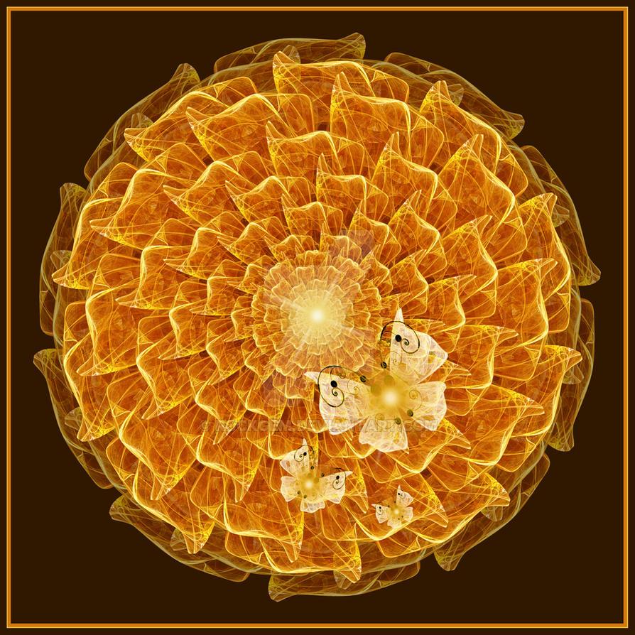 Marigold. by rockgem
