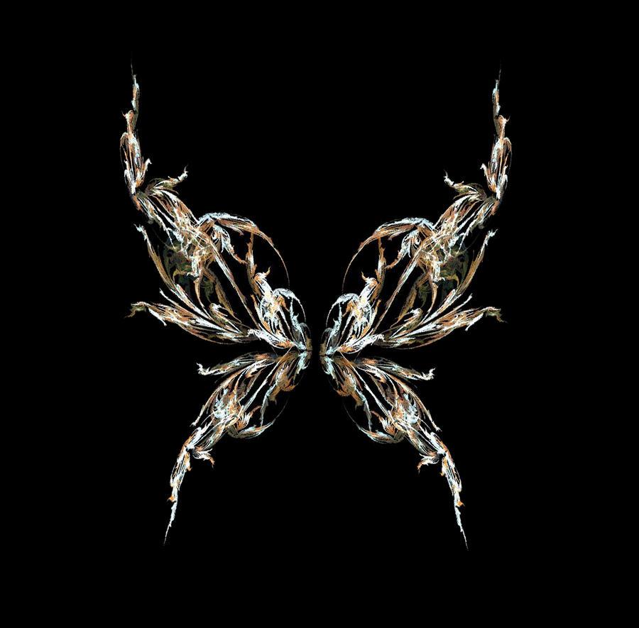 Fractal Stock - fairy wings XIII by rockgem