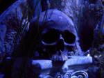 Stock - Underwater skull IV