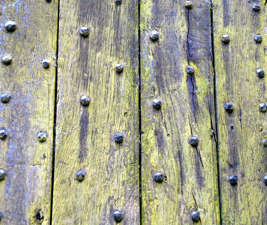 Stock Texture - weathered wood door with studs