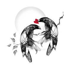 Magpie Romance