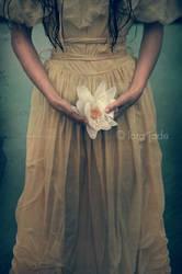 held my heart in my hands.. by larafairie