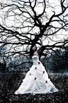 The Moribund Tree
