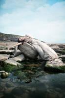 Siren Of The Sea II by larafairie