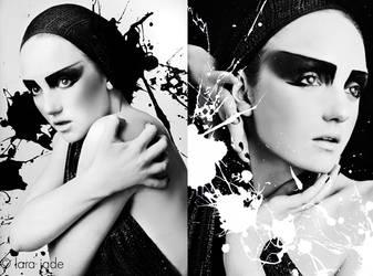 Holly Studio II by larafairie