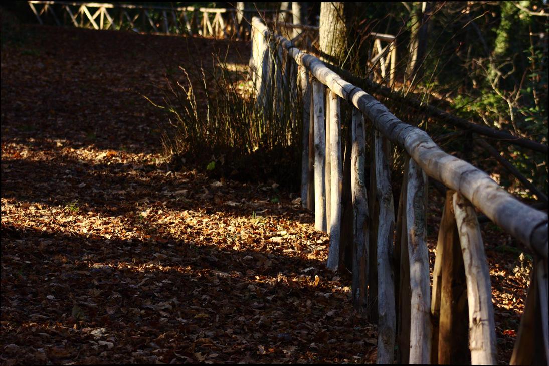Fall Leaf Carpet by giovimonto