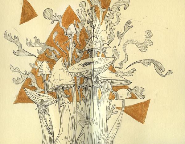 Mushroom Moleskine by manfishinc