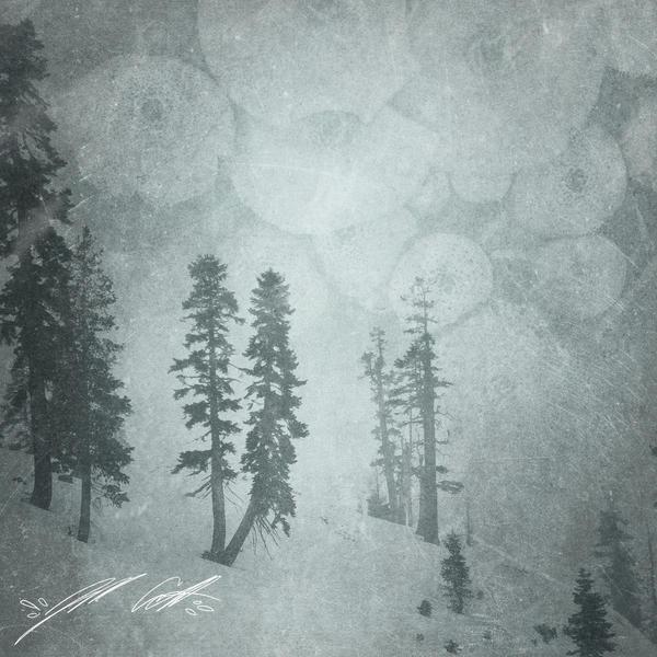 Winter by manfishinc