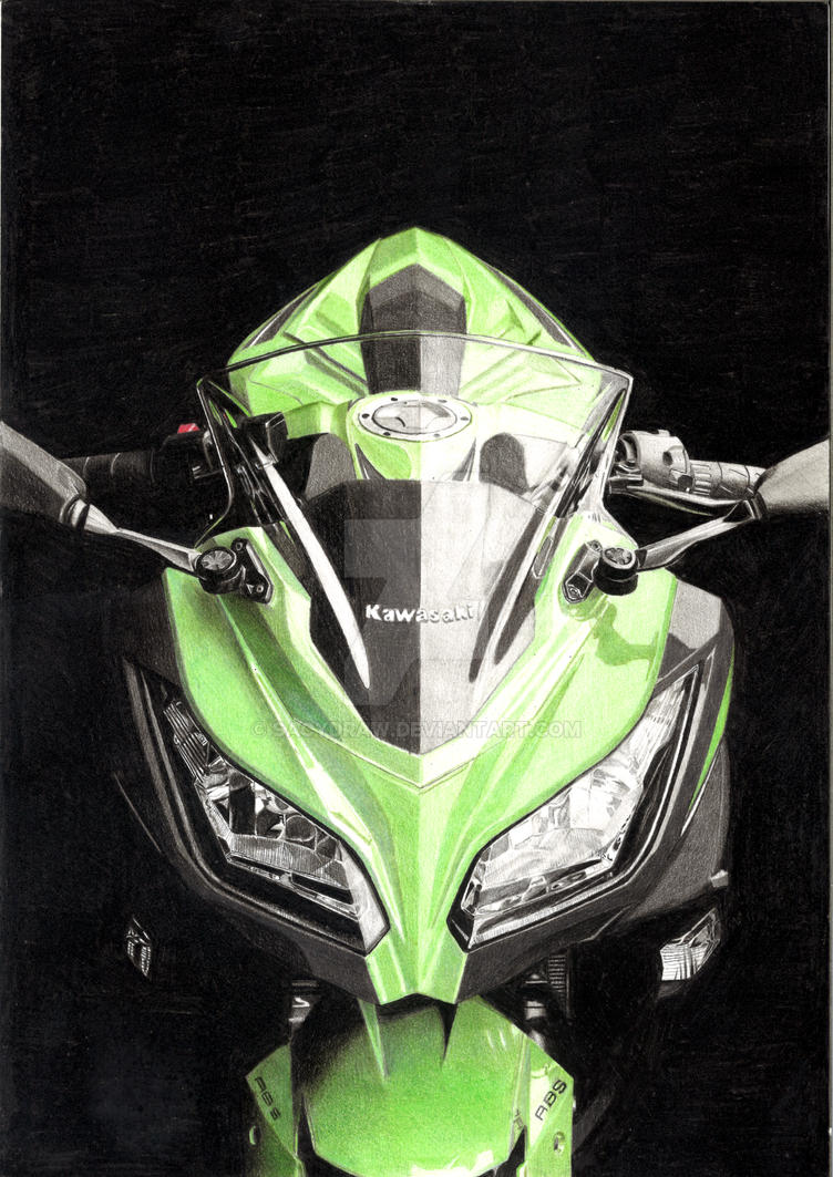 Kawasaki Ninja 300 By Sacydraw