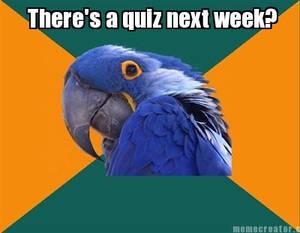 PP Quiz