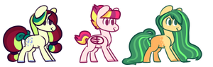 pony adopts closed