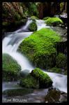Mossy Stream 3 by ElenionTolto