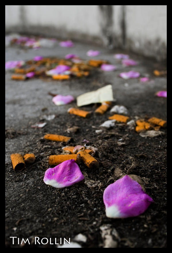 Rose Petals and Cigarettes by ElenionTolto