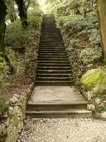 Stone Stairs in a Garden_Stock by MJ84-StockPhotos