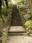 Stone Stairs in a Garden_Stock