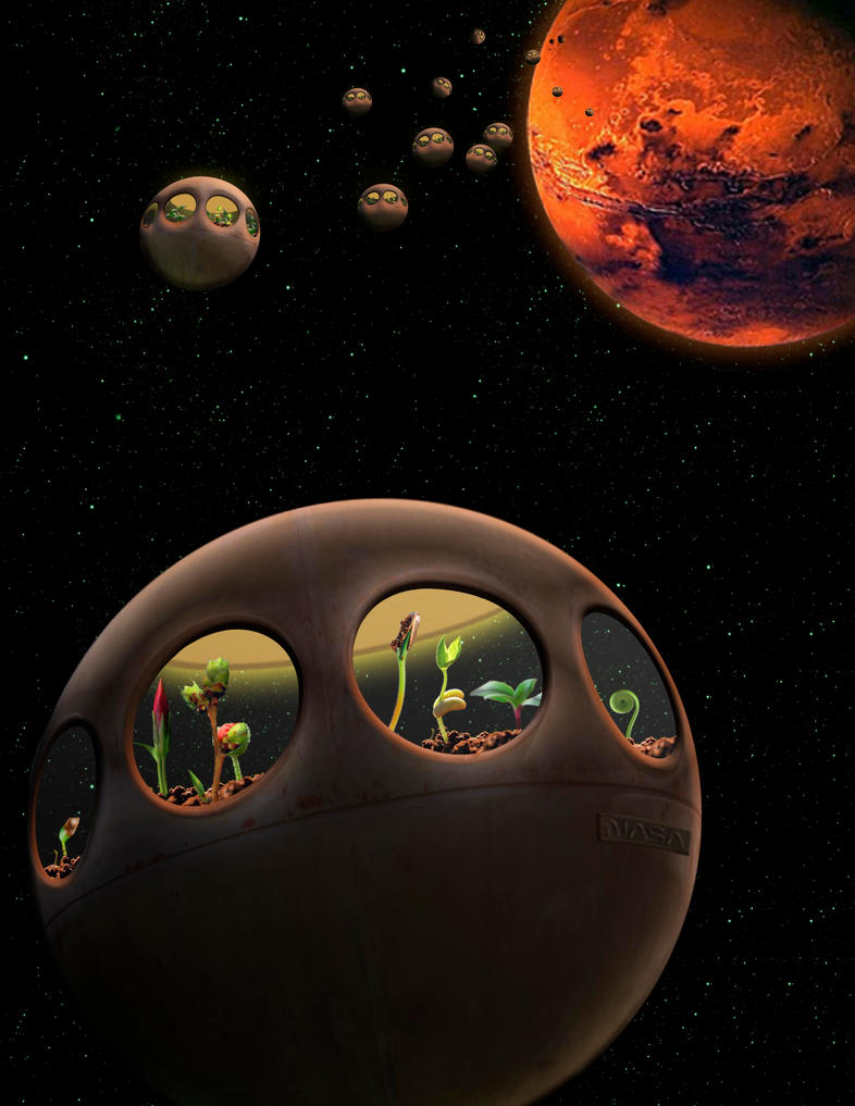 Earth-Mars Transplantation Project, 2042 by RonSandersatwork