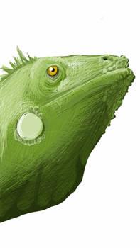 Sketch A Reptile