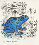 Inktober Day 23 Jungle Frogs