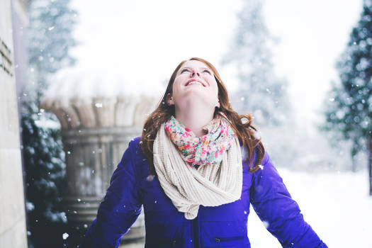 When the Snow Falls Down