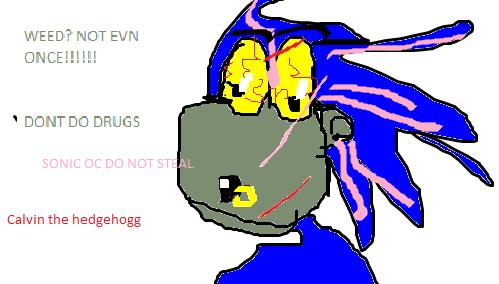 Bad Sonic Ocs Wwwpicturessocom