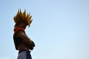 Gogeta and the sky by Alexcloudsquall