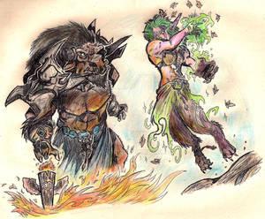Shaman vs Druid