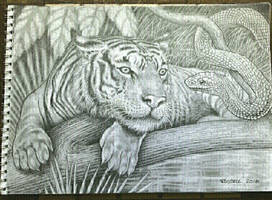 Tiger Snake Commission