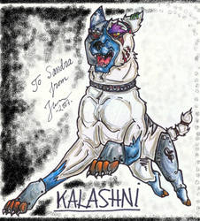 BDayGift- Kalashni by Jefrma
