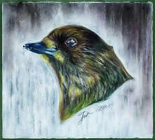 Lil bird 2
