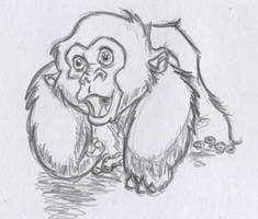 baby Gorilla by Jefrma