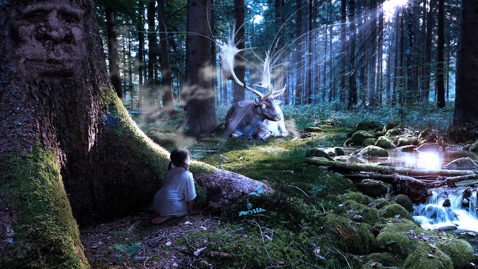 Image Result For Downloads Deer