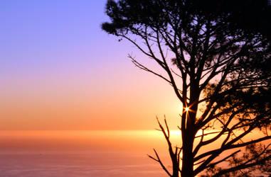 Sunset on Signal Hill by Lauren-Paikin