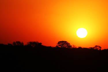 African Sun by Lauren-Paikin