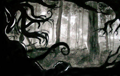 Shadowed Wood by Triserao