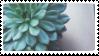 First Stamp Attempt