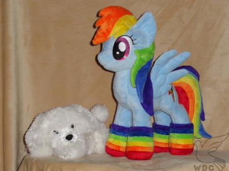 Rainbow Dash in her Socks