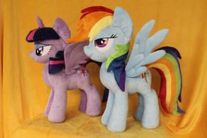 Twilight and Rainbow Dash by WhiteDove-Creations