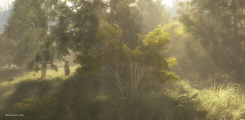 Forest light by faroutsider