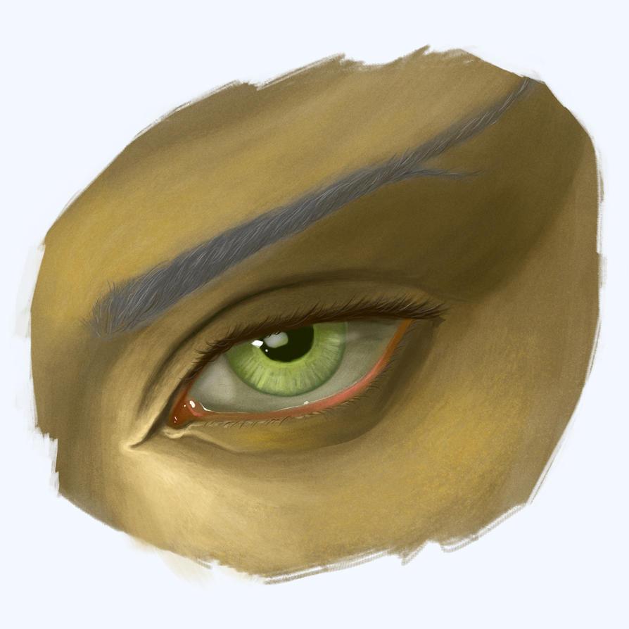 Altmer Eye by ambientblue