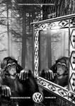Chimps Recognise